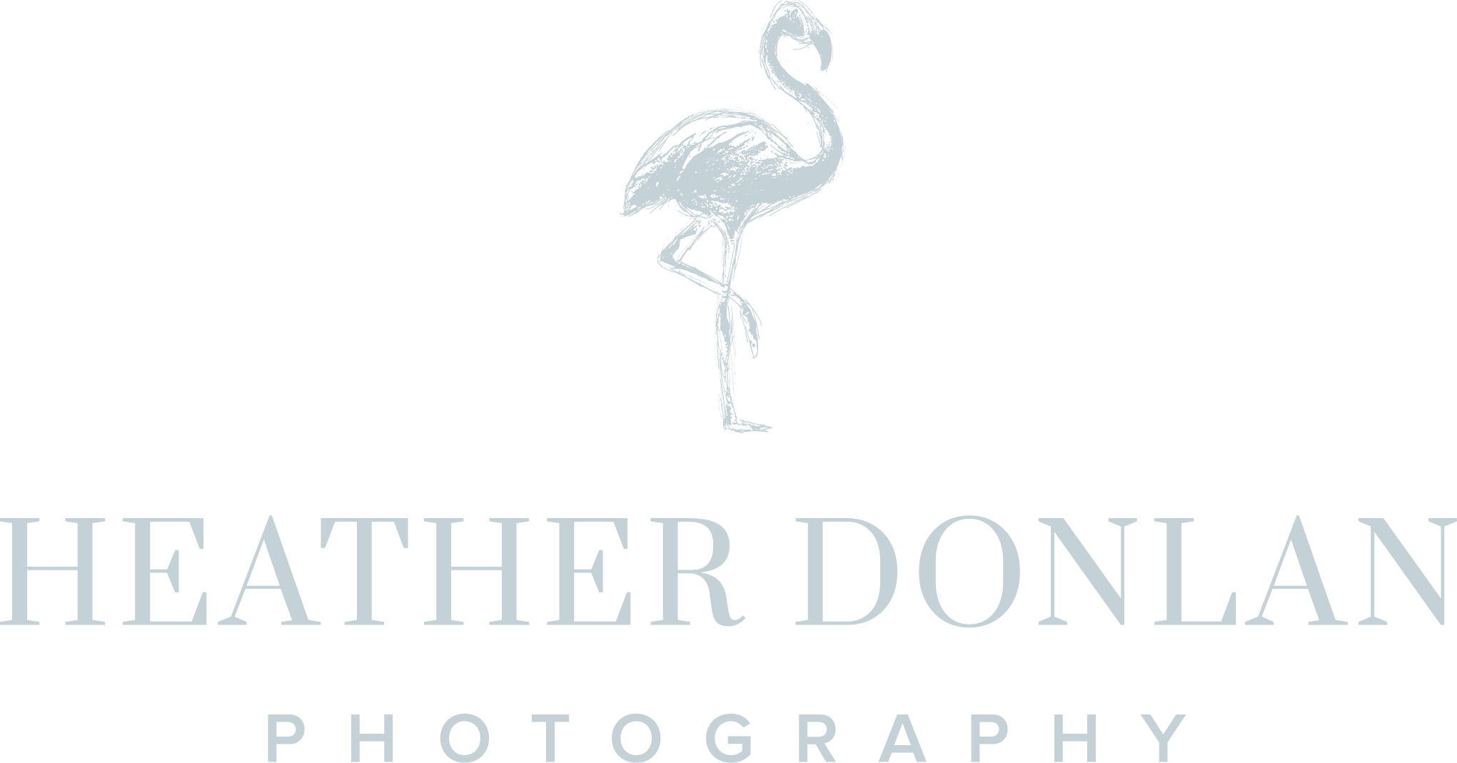 Heather Donlan Photography